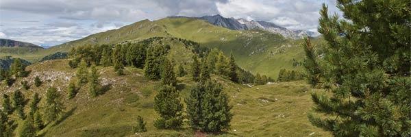 The grassland on the top of Cornon Mountain
